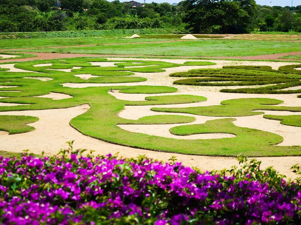 The dry zone botanical garden belongs to less know things to do in the South Sri Lanka