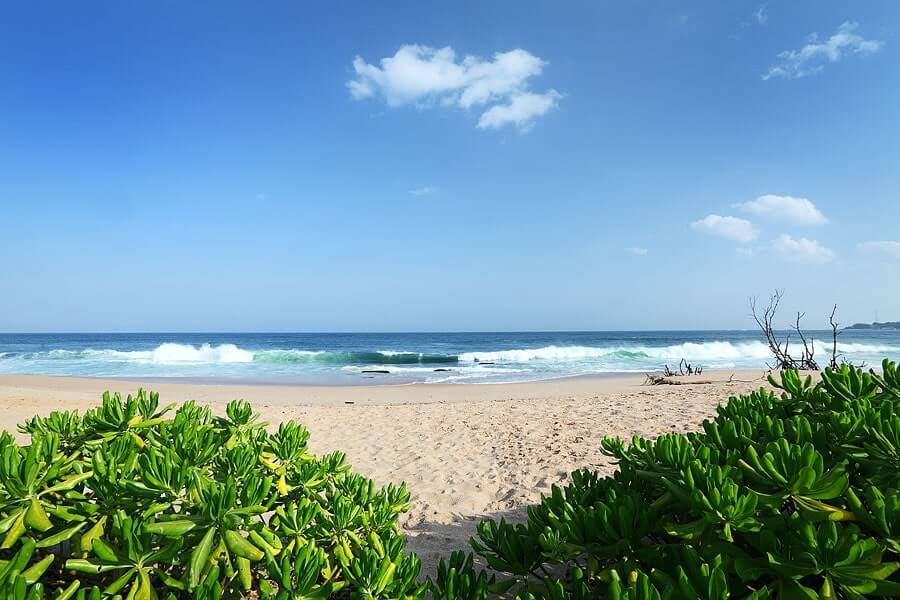 Photo of the beautiful beach in front of Tropical Garden offering private accommodation in Sri Lanka