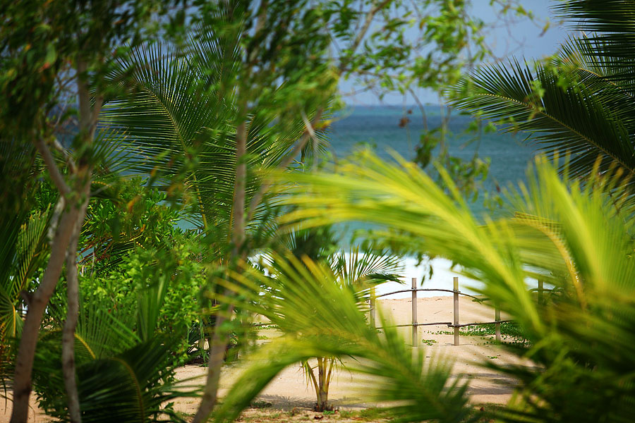 Vyražte na Srí Lanku bez cestovky