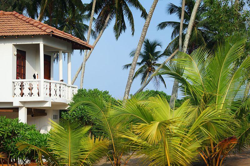 Rezervovat Lotosový domek na Srí Lance